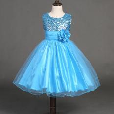 Gaun Ulang Tahun Anak Perempuan Lucu Yang Dapat Membuat Orang Yang Melihatnya Tertawa Terbahak-bahak atau Justru Kesal Karena Merasa Payet Rompi Without Lengan Putri Gaun Renda 10 Warnd Baju Bayi Cewek Vestido