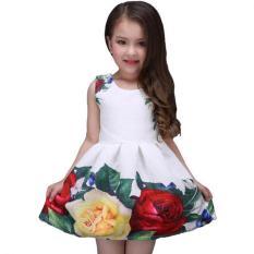 Dia Gaun Putih Karya Desainer Merek Baru Pakaian Anak Bunga Mawar Renda Partai Pernikahan Baju Putri Girl