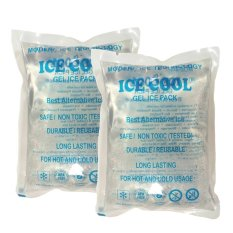 Harga Ice Cool 2In1 Pack Ice Gel Pendingin Botol Asi Satu Set