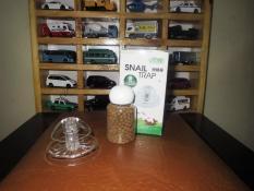 Diskon Ista Snail Trap Indonesia