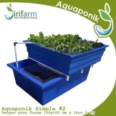 Jirifarm Paket Akuaponik Simpel#2 Include Ikan Nila