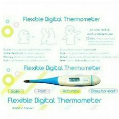 Little Giant Thermometer Digital