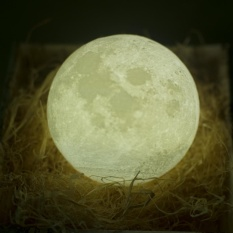 Harga Night Light Pldm 3D Printing Moon Lamp Lunar Usb Charging Nightlight Touch Control Brightness Dua Nada Diameter 5 1 Inch Intl Yang Murah Dan Bagus