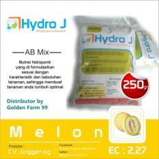 Nutrisi Hidroponik Kusus Untuk Tanaman Melon