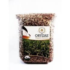 Katalog Organic Beras Mix Organik 2Kg Hitam Merah Coklat Oryzae Terbaru