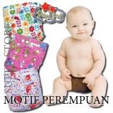 Beli Paket Bundle 3 Clodi Babyland Pocket Dengan 3 Insert Microfiber Motif Perempuan Popok Bayi Cuci Ulang Berkualitas Murah
