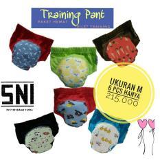 Jual Paket Hemat Klodiz Training Pant Motif Ukuran M Celana Latihan Pipis Anak Balita Isi 6 Pcs Satu Set