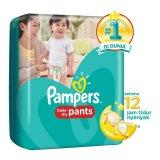 Beli Pampers Popok Baby Dry Pants L 26 Yang Bagus