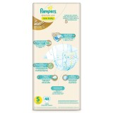 Tips Beli Pampers Premium Care S48 Perekat