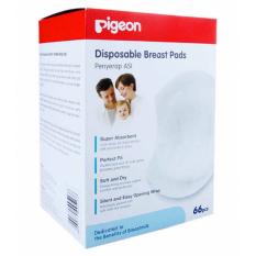 Harga Pigeon Breast Pad 66 Pcs Merk Pigeon