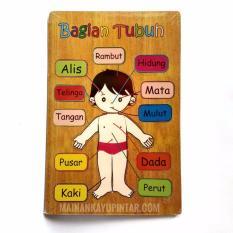 Mainan Kayu Pintar Puzzle Kayu Tubuh Putri