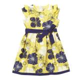 Review Pada Rorychen Falbala Anak Perempuan Lengan Gaun Bermotif Bunga Bunga
