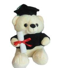 Spicegift Boneka Teddy Bear Wisuda Duduk