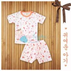 Velvet Junior Rabbit Sleeve Short Size XXL Color Orange