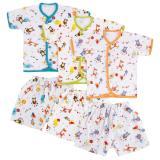 Beli Velvet Safari Baju Celana Pendek L 3 Pcs Online Murah