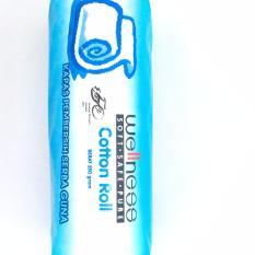 Wellness Cotton Roll Kapas Gulung 250 Gr