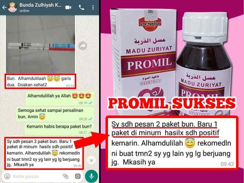 Madu Promil Free Test Pack Madu Promil Madu Zuriyat Madu Zuriat Subur Penyubur Kandungan Wanita Lazada Indonesia