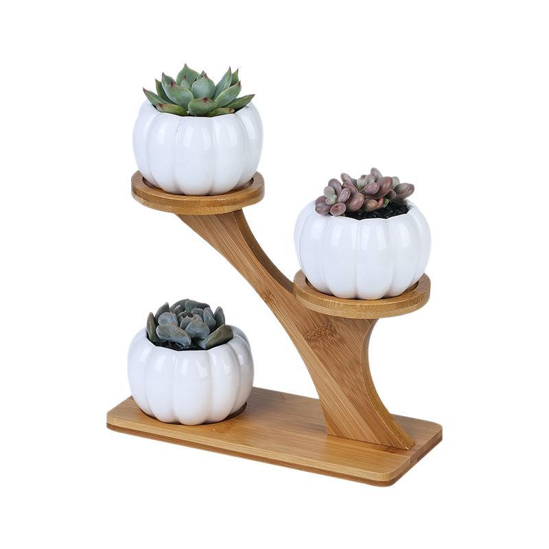 1 Set Ceramic Garden Pots Modern Pumpkin Flowerpot Nursery Succulent Plant Pot 3 Bonsai Planters with 3-Tier Bamboo Shelf