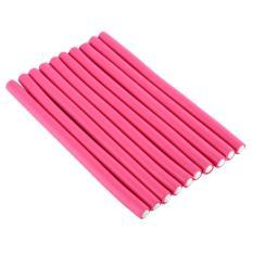 Review 10 Pcs Set Lembut Hair Curler Roller Hair Curler Alat Styling Intl Oem Di Tiongkok