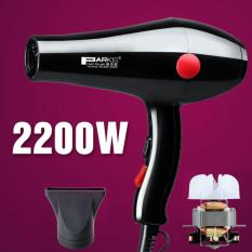 2200W High-Power Household Hair Dryer Hot Cold Wind Electric Hair Blower Professional Salon Barber Shop Use Hair Styling Tools(Black) - intl