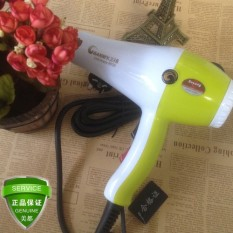 2300 WS Tiga Kayu Mudah 8638 Pengering Rambut Bisu Lingkungan Protectionses Tidak Memiliki Radiasi Rambut Galeri
