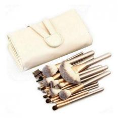 Beli Acewin Bc0063 020401 Professional Makeup Cosmetic Brush Set 24Pcs Beige Dengan Kartu Kredit