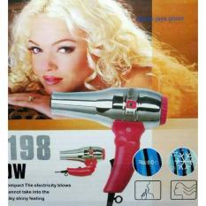 Spesifikasi Alice Hair Dryer Rambut A 198 Hemat Listrik 300 Watt Lengkap