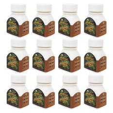 Alinesia - Tongkat Ali 100% (Ekstrak) - Paket 12 Botol