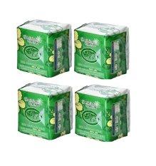Ulasan Avail Pembalut Herbal Pantyliner Paket 4 Pcs