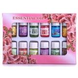 Beli Bestprice 12 Herbs Aromatherapy Essential Oil Flavors Body Spa Humidifier Oils Set New Intl Terbaru