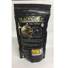 Diskon Black Garlic Bawang Hitam Super Ajaib 200 Gr Obat Kolesterol Kolestrol Mencegah Jantung Koroner Stroke Asam Urat Herbal Jawa Timur