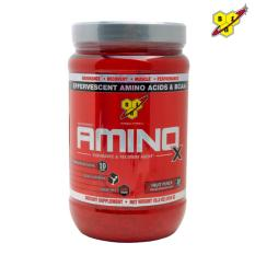 BSN Amino X 30 serving Fruit Punch