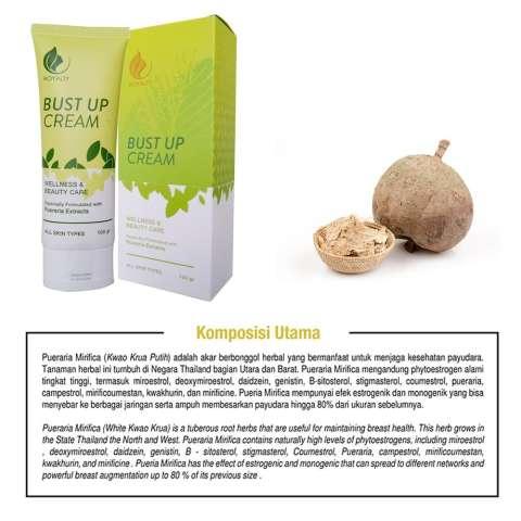Bust Up Cream Pembesar Payudara Membuat Payudara Lebih Kencang dan Padat Sehingga Indah Untuk Dipandang Tanpa Efek Samping Breast Up Cream 100% BPOM 1