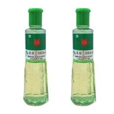 Diskon Besarcap Lang Minyak Kayu Putih 120 Ml 2 X Botol