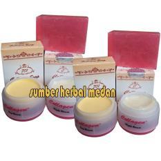 Ongkos Kirim Collagen Cream Day And Night Plus Sabun Original 2Psc Di North Sumatra
