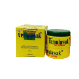 Promo Toko Cream Temulawak Day Night Original Bpom