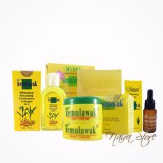 Jual Cream Temulawak Original Holo Super Paket Komplit Temulawak Cream Siang Cream Malam Sabun Toner Dan Serum Branded