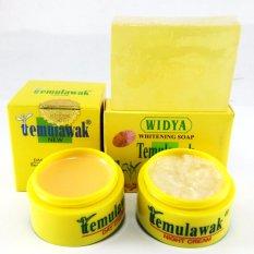 Cream Temulawak Original Holo Super - Paket Temulawak Asli