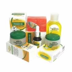 Toko Jual Cream Temulawak Widya Paket Lengkap Original Bpom 1 Paket Cream Sabun Serum Dan Toner 100 Asli
