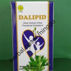 DALIPID obat herbal menurunkan kolestrol