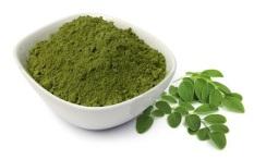 Obat Herbal Bubuk Daun Kelor moringa powder