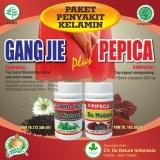 Review Toko Obat Kencing Nanah Sipilis Gonore Herbal De Nature