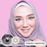 Spesifikasi Dreamcolor1 Albertine Grey Softlens Minus 3 50 Gratis Lens Case Yg Baik