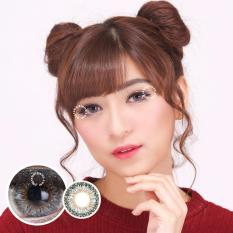 Dreamcolor1 Eve Grey Softlens Normal Minus 00 Gratis Lenscase Dreamcolor1 Diskon 40