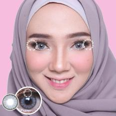Review Dreamcolor1 Mini Pony Grey Softlens Minus 75 Gratis Lens Case Indonesia