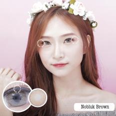 Dreamcolor1 Nobluk Brown Softlens Minus 75 Gratis Lenscase Diskon Akhir Tahun