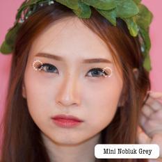 Spesifikasi Dreamcolor1 Nobluk Mini Grey Softlens Normal Gratis Lens Case Beserta Harganya