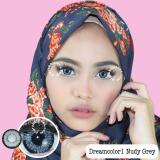 Review Dreamcolor1 Nudy Grey Softlens Minus 6 00 Gratis Lenscase