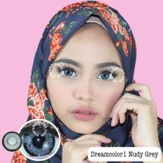 Beli Dreamcolor1 Nudy Grey Softlens Minus 6 00 Gratis Lenscase Murah