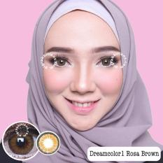 Dreamcolor1 Rosa Brown Softlens Minus 1 75 Gratis Lenscase Di Indonesia